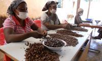Pulitura_fave_di_cacao_Choco_Togo_web.jpg